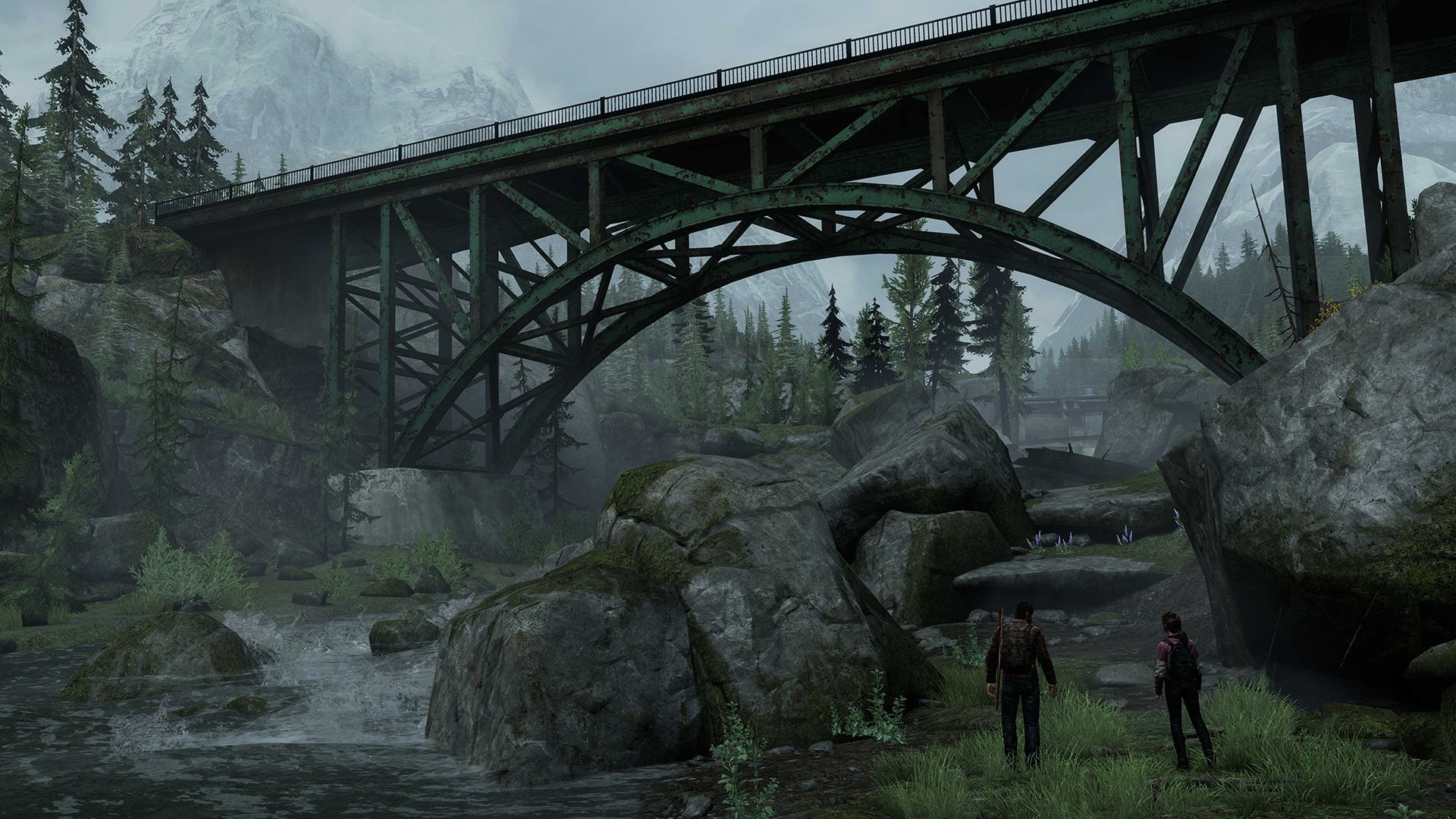 bridge view 1406594446