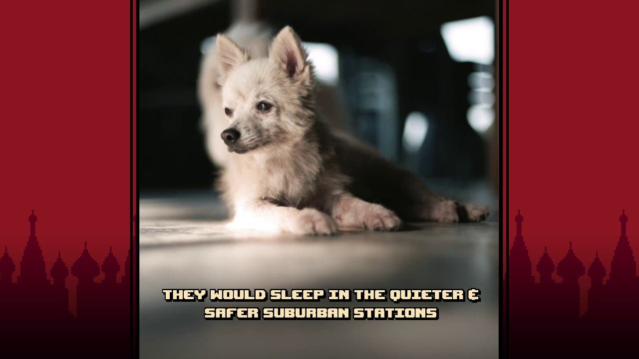 russian subway dogs from spooky