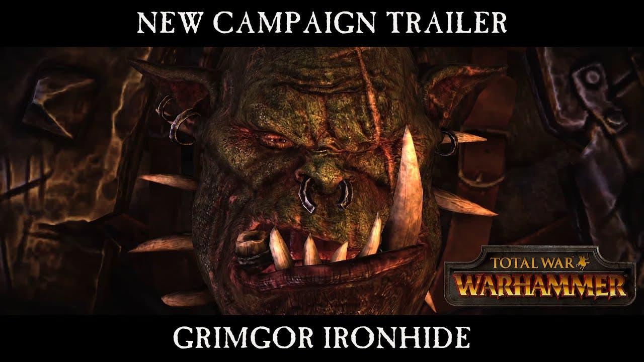 latest total war warhammer video