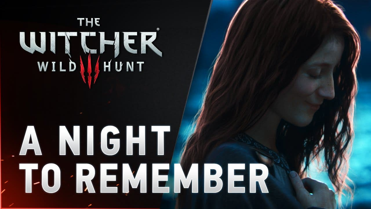 the witcher 3 wild hunt a night