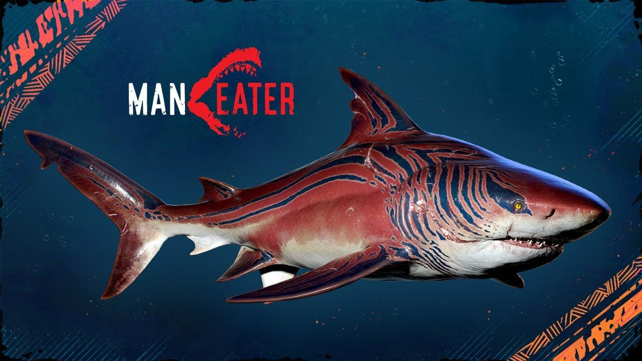 maneater celebrates shark week w