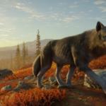 7YV Wolf 1920x1080