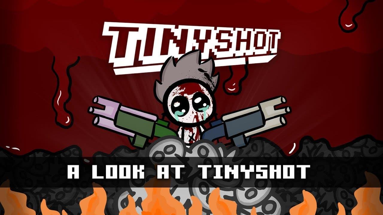 tinyshot a 2d roguelike shooter